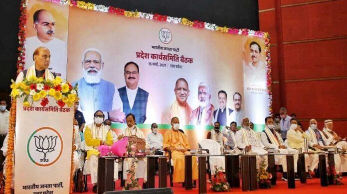 BJP Working Committee